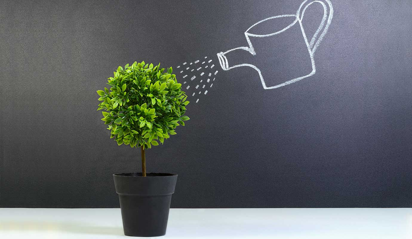 Chalk watering-can watering a real plant