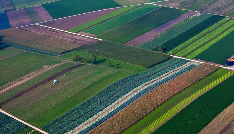 Aerial view of colorful fields
