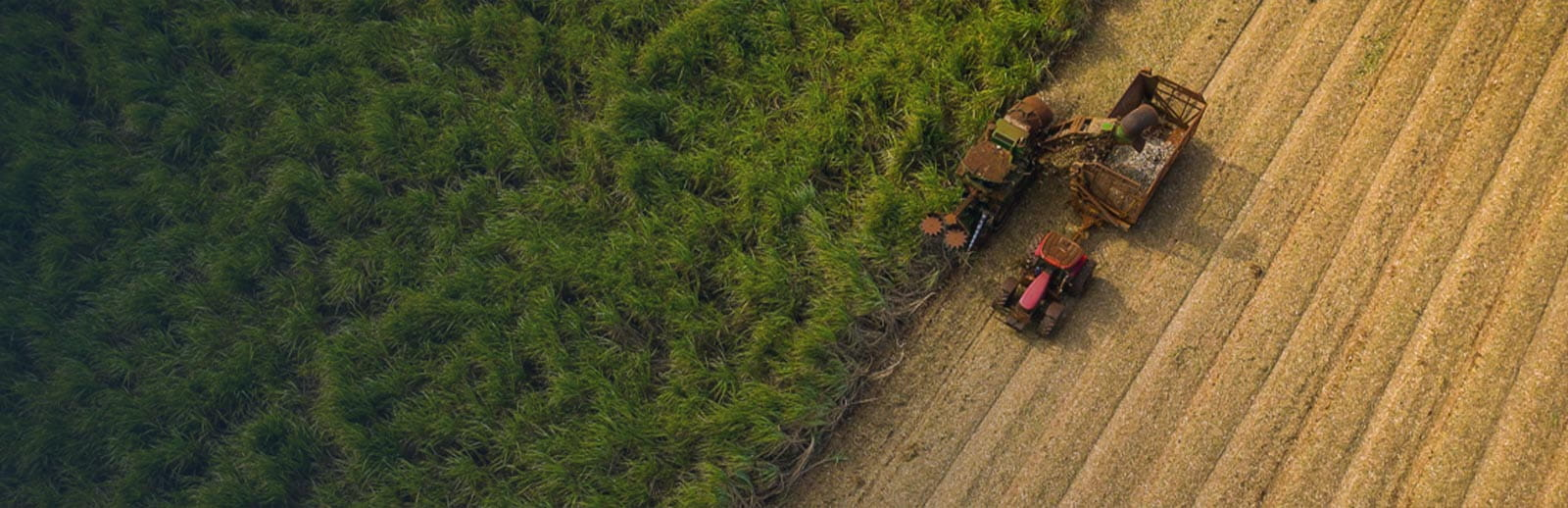 An aerial view of a tractor and farm equipment clearing trees