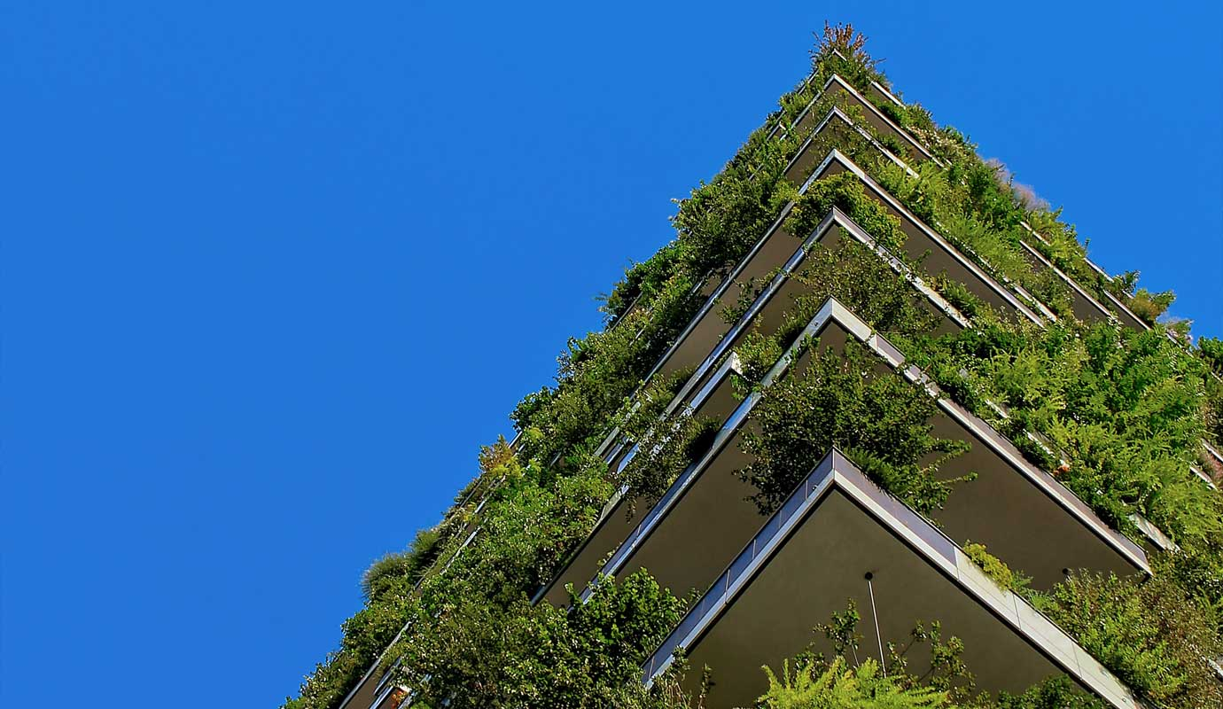 A view up at the corner of a building with numerous greenery and shrubs.