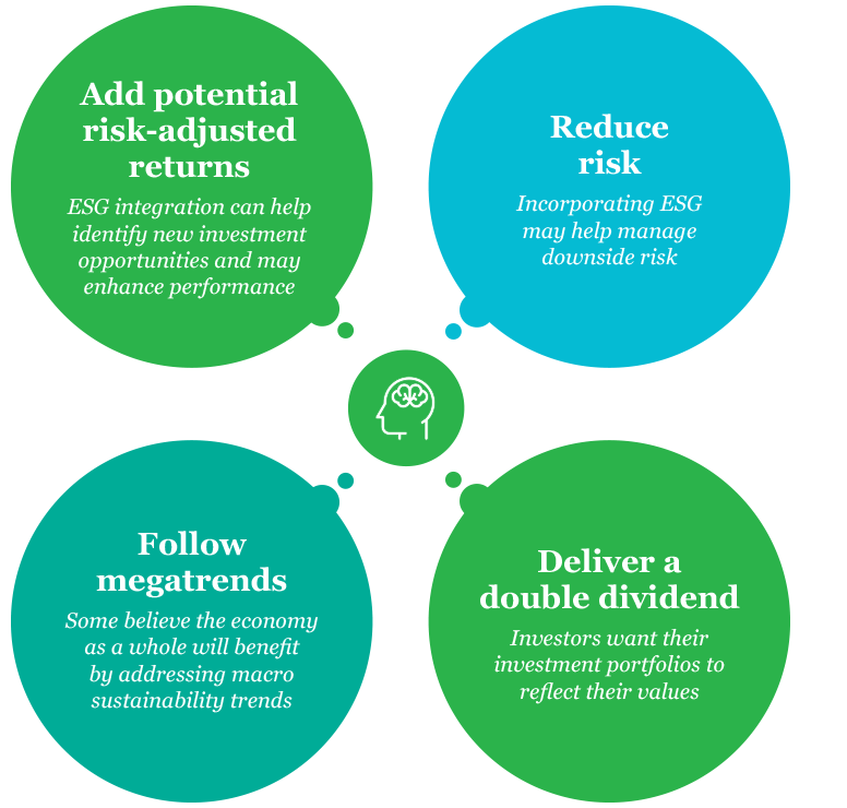 Info-graphic: some of the reasons that investors choose an RI approach