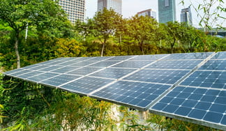 Solar panels in green space with city backdrop