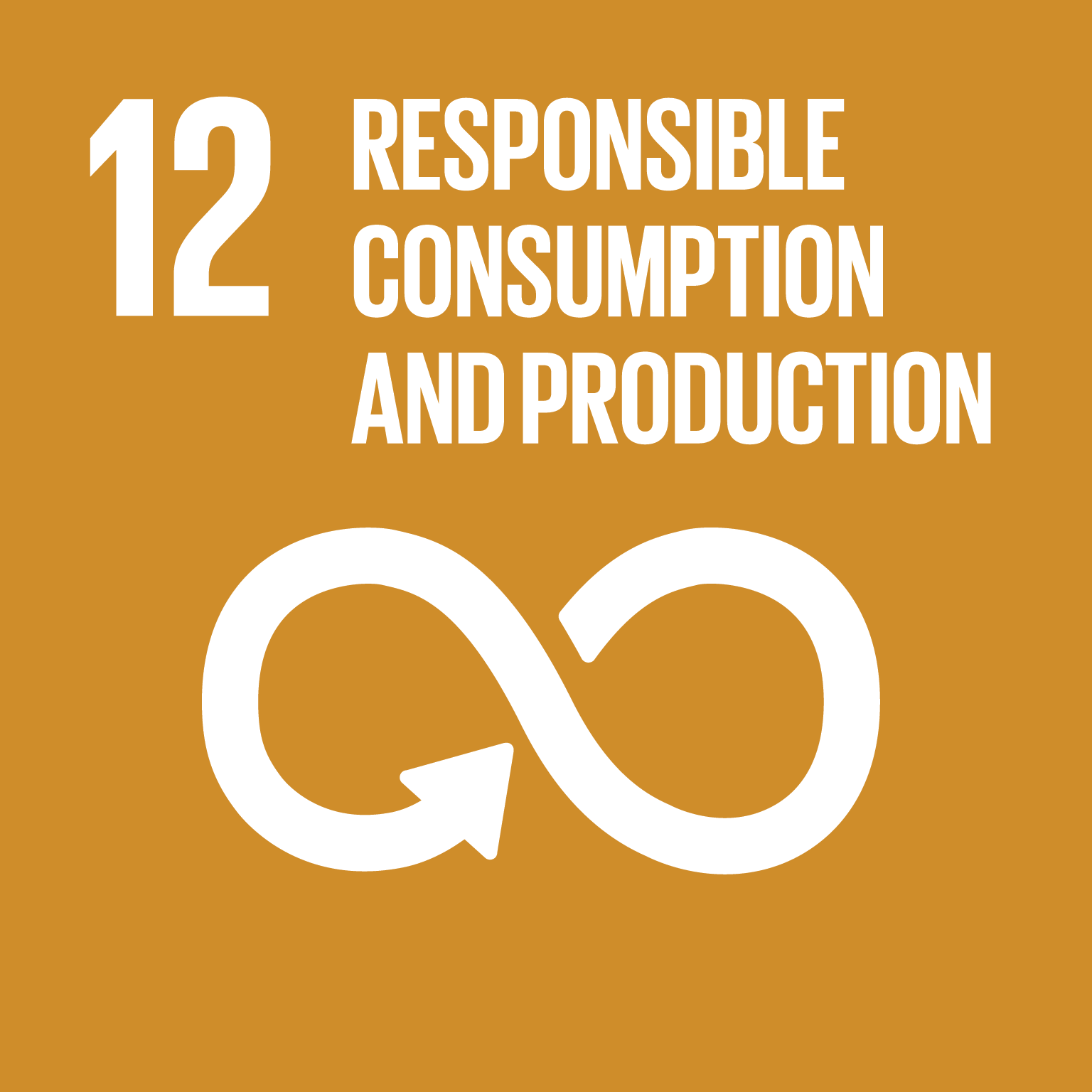 U.N. SDG goal 12, responsible consumption and production