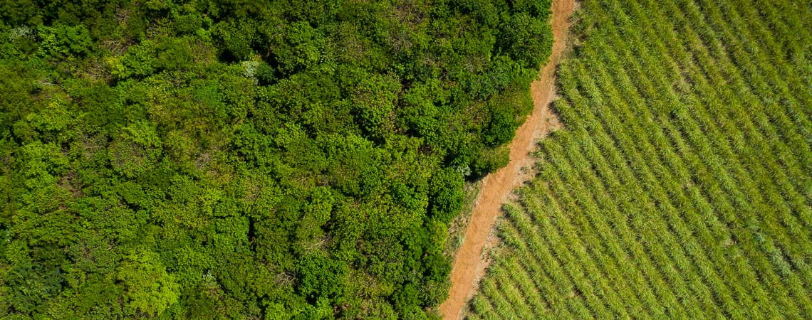 Drone image shot of farmland in Brazil