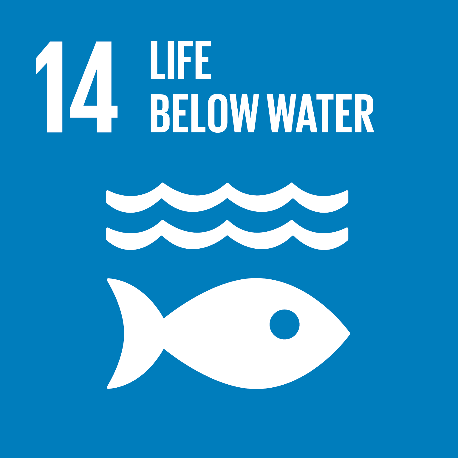 U.N. SDG goal 14, life below water