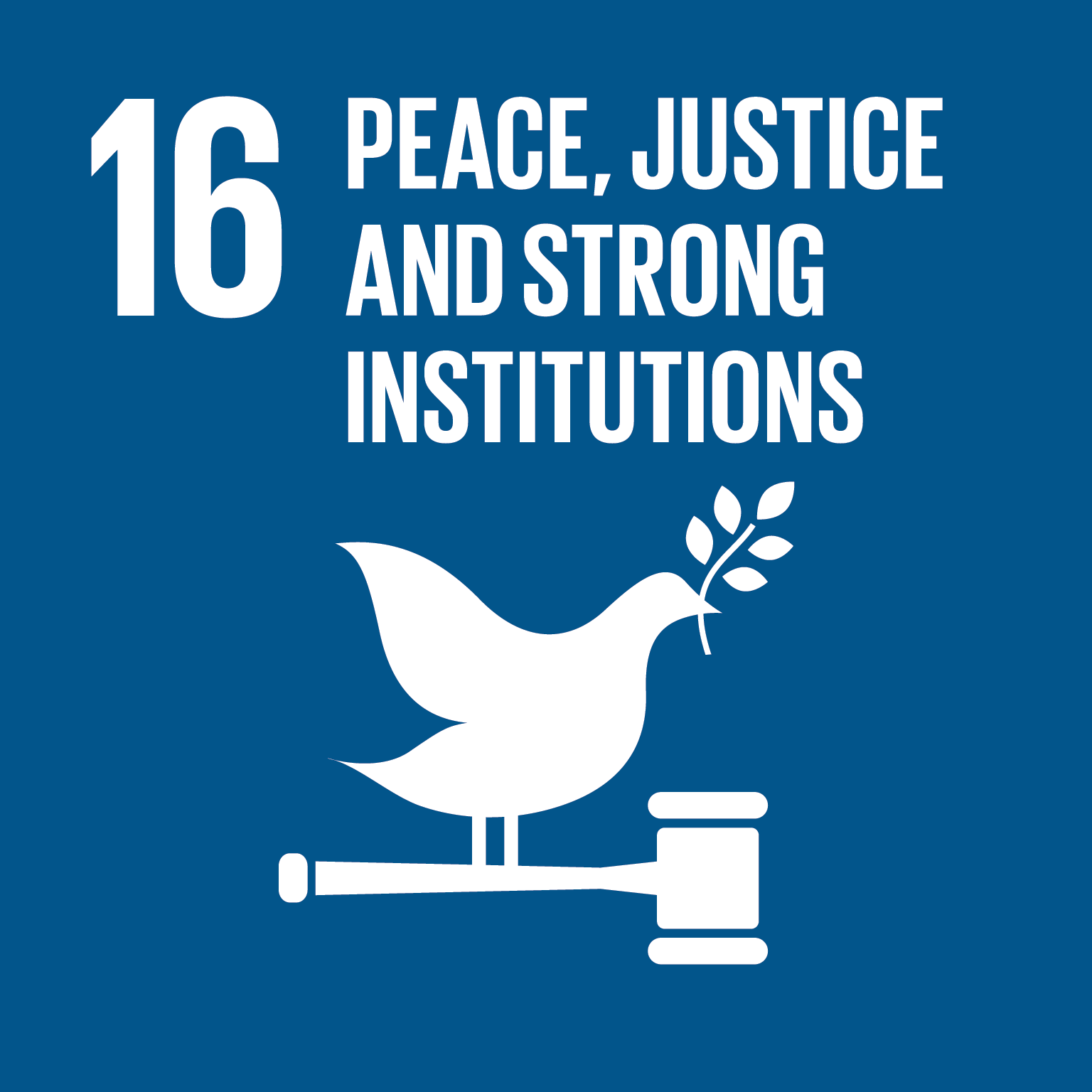 U.N. SDG goal 16, peace, justice and strong institutions