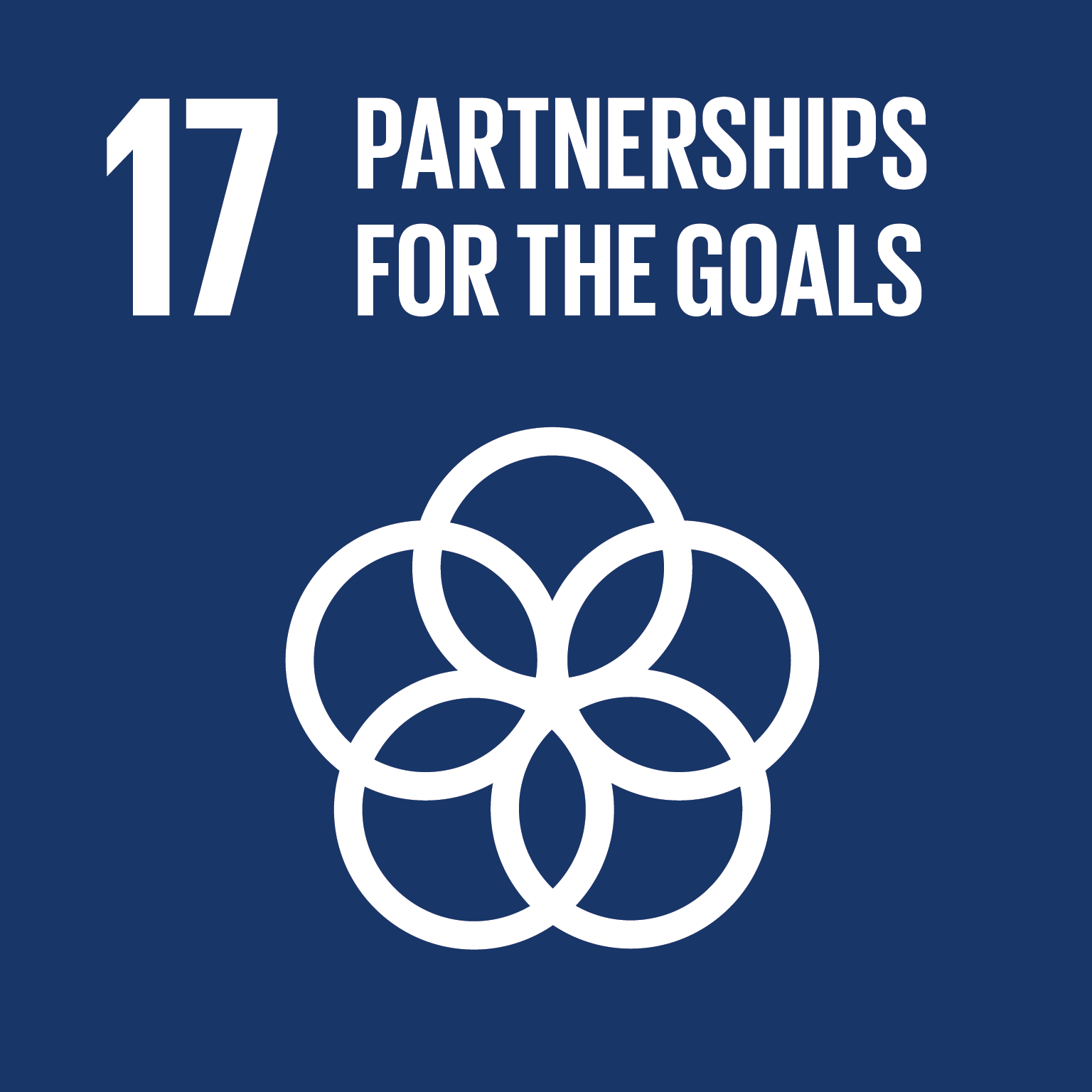U.N. SDG goal 17, partnerships for the goals
